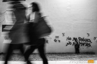 Fotografía: © Julián Miconi, proyecto341.com reservados todos los derechos / all rights reserved